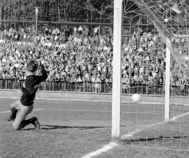 Sport - Labdarúgás - Magyarország B - Lengyelország B mérkőzés