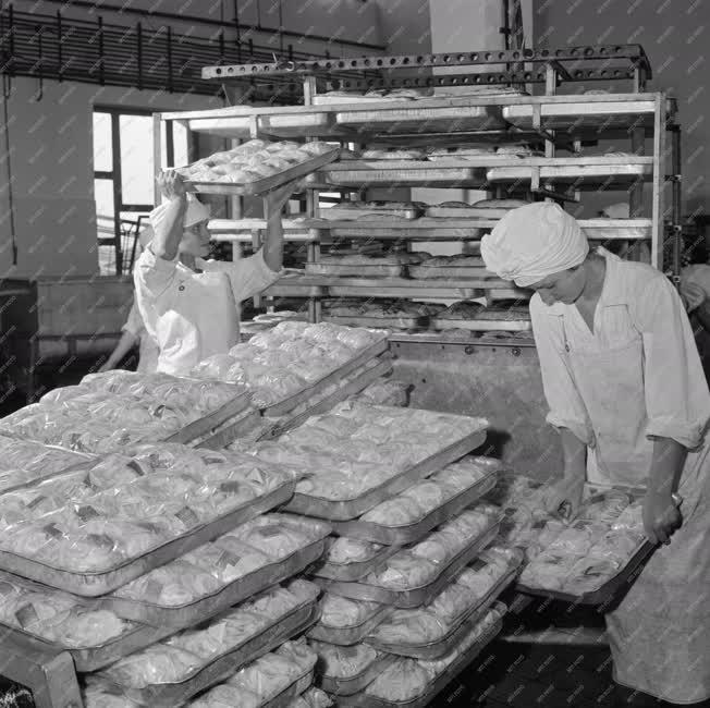 Élelmiszeripar - Miskolci Hűtőház