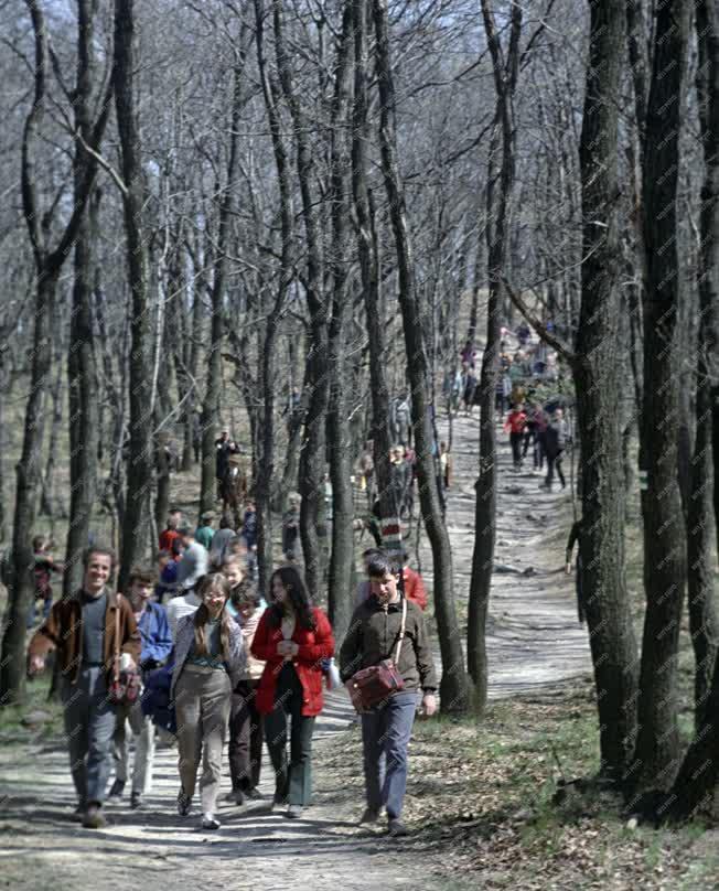 Természet - Életkép - Szabadidő - Kirándulók a Pilisben