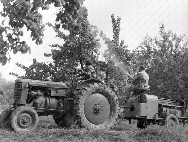 Mezőgazdaság - Növényvédelem