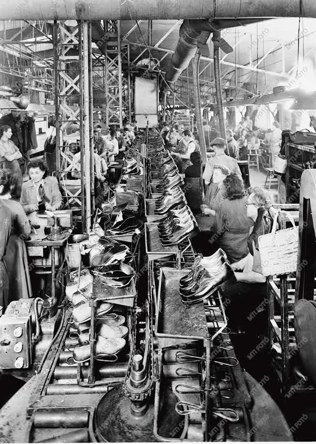 Gazdaság - Könnyűipar - Cipőgyártás