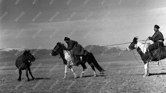 A szerző válogatása - Pillanatkép Mongóliából