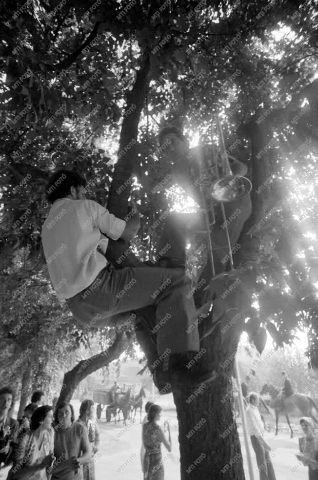 Életkép - Trombitás a fán