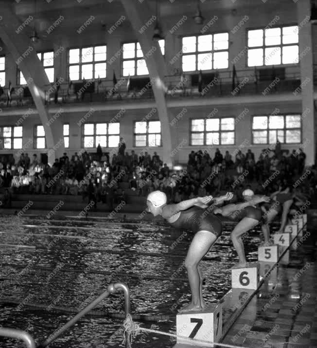 Sport - A középiskolások országos úszóbajnokságán