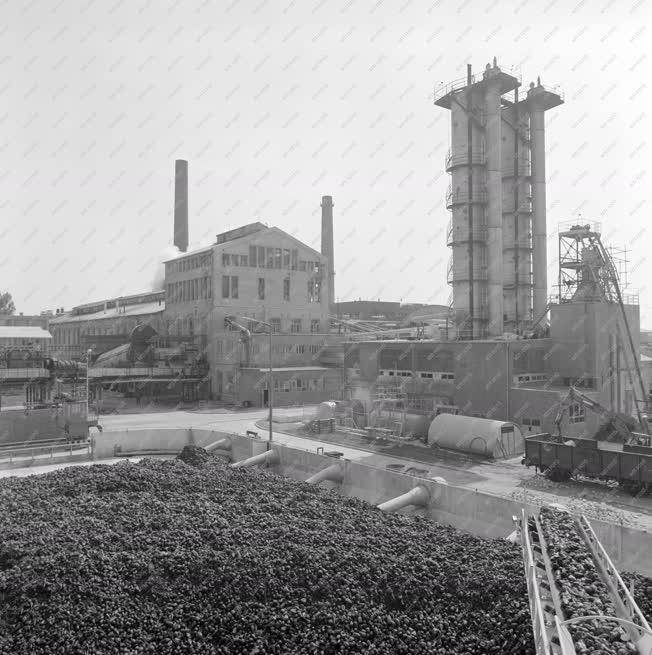 Ipar - A szolnoki cukorgyárban