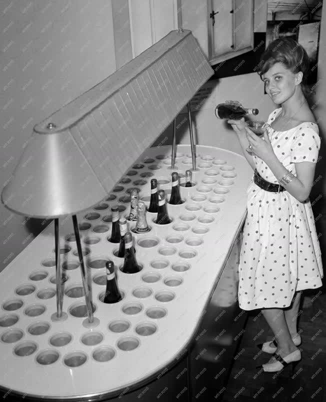 Ipar - Vendéglátás - Új italhűtőpult prototípusa
