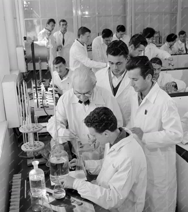 Oktatás - Budapesti Felsőfokú Élelmiszeripari Technikum