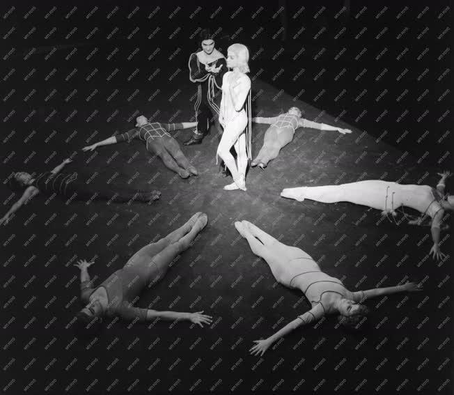 Kultúra - Balett - Hidas Frigyes: Concerto a szivárvány színeire