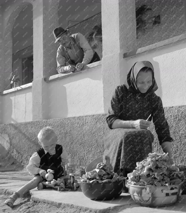 Életszínvonal - Helytörténet - Tibolddaróc múltja és jelene