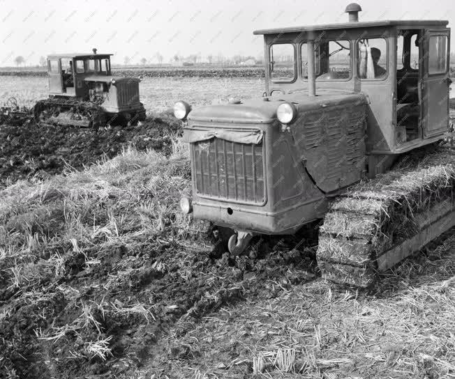 Mezőgazdaság - Rizsszántás a Kopáncsi Állami Gazdaságban