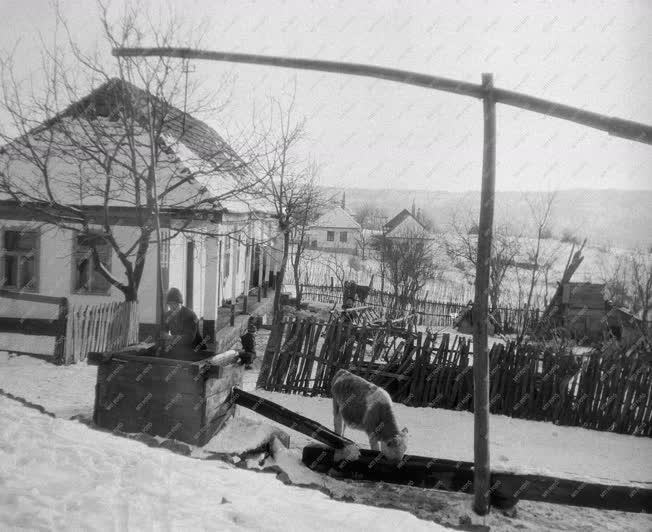 Életkép - Téli képek Mátraszentimrén