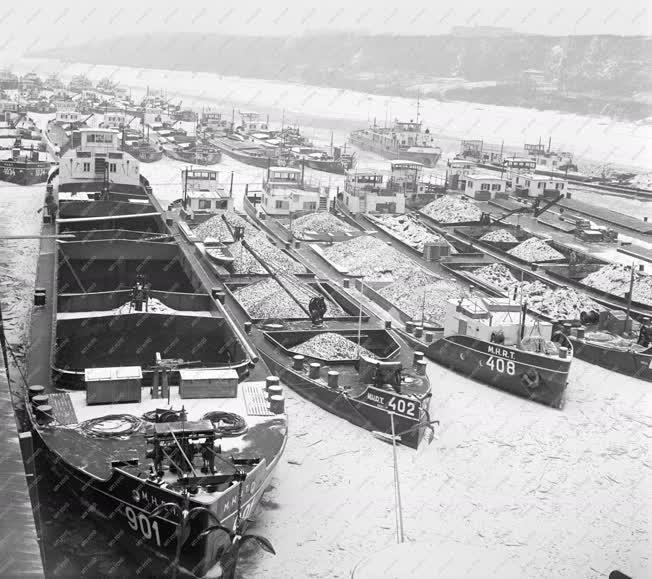 Kikötő - Uszályok a kikötőben