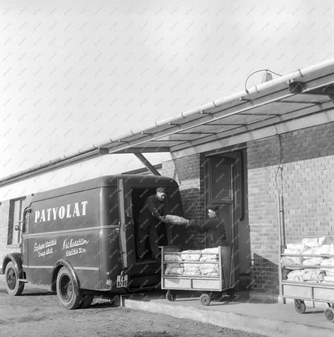Ipar - A Fővárosi Patyolat Vállalat üzemegysége