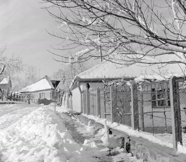 Városkép-életkép - Tél Hollókőn