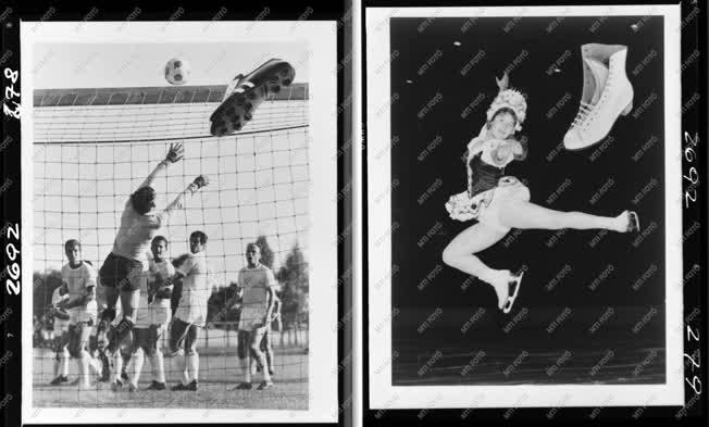 Sport - Kereskedelem - Divat - HUNGAROCOOP album