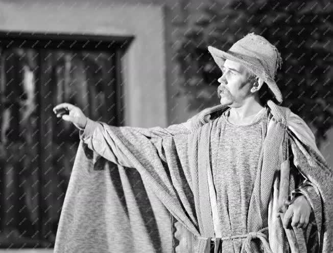 Kultúra - Shakespeare: Tévedések vígjátéka