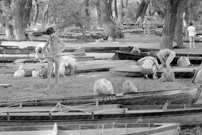 Sport - Evezős csónakok a kikötőhelyen