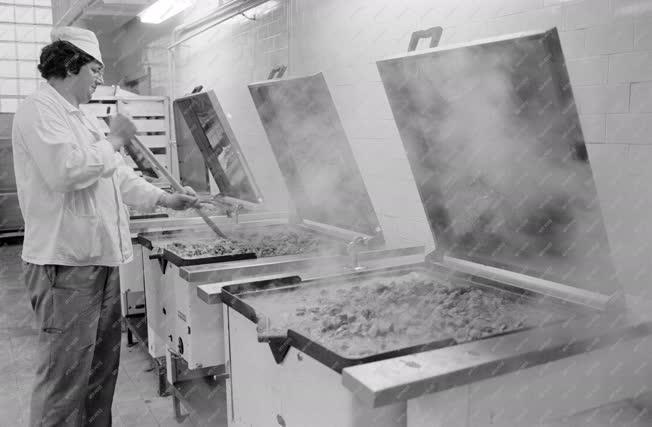 Kereskedelem - Ipar - Mélyhűtött készételek konyhája