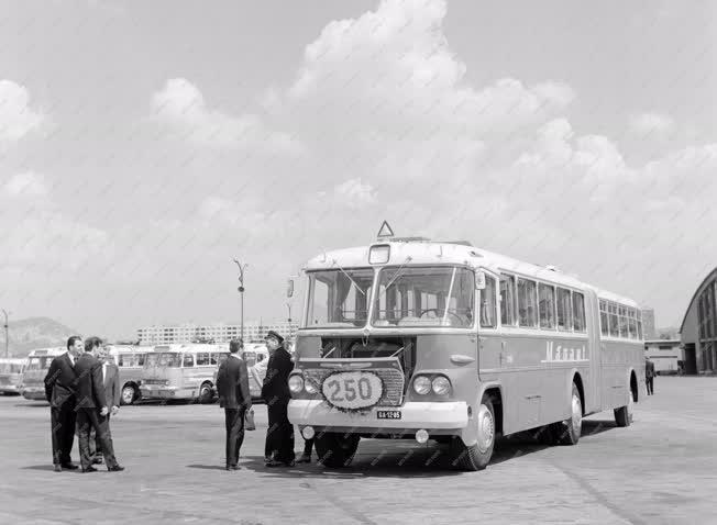 Közlekedés - A 250. MÁVAUT csuklós autóbusz