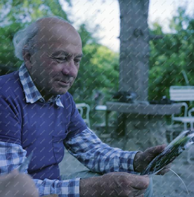 Kultúra - Illyés Gyula költő