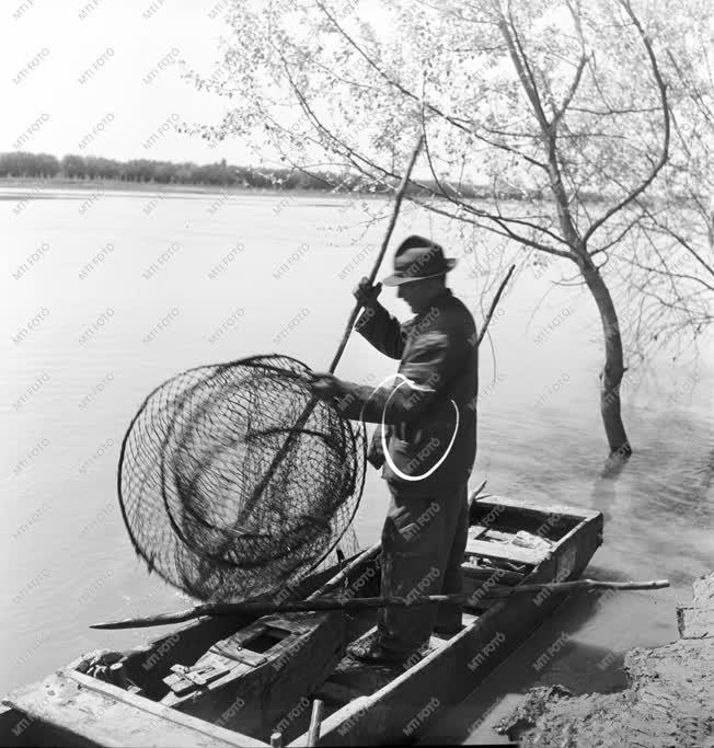 Mezőgazdaság - Halászat - Varsával halászó halász