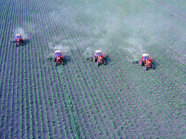 Mezőgazdaság - Permeteznek Bólyon