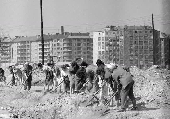 Belpolitika - Munka -  Társadalmi munka