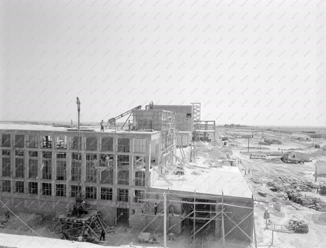Ipar - Épül a Szalmacellulózgyár Sztálinvárosban