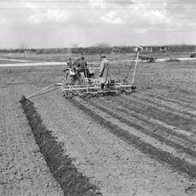 Mezőgazdaság - Drótvezetéses kukoricavető-gép