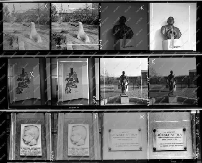 Városkép - Kultúra - Szobrok, emléktáblák