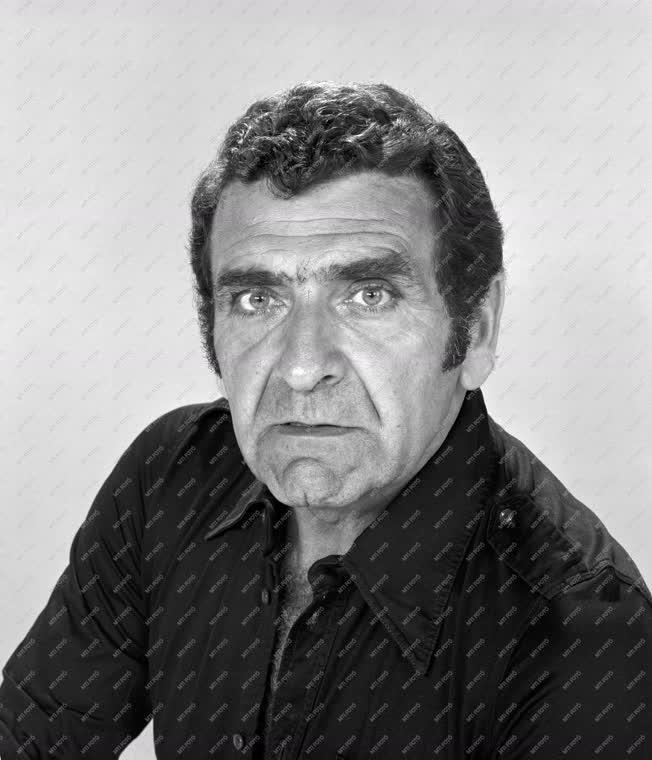 Művész portré - Bárdy György