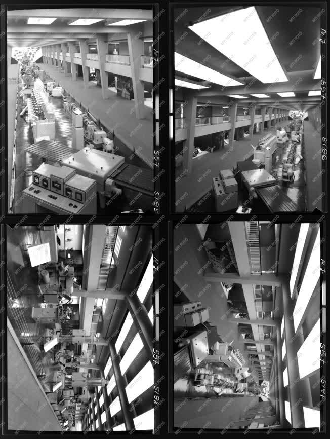 Kiállítás - Külkapcsolat - Moszkvai kiállítás