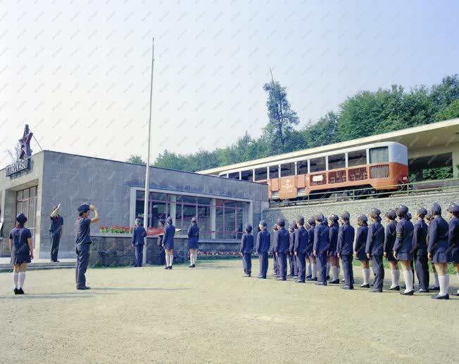 Szervezet - Közlekedés - Úttörővasút