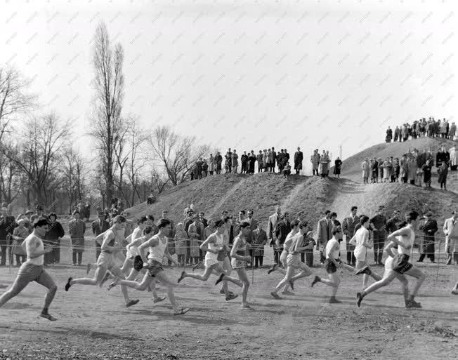 Sport - Atlétika - Mezei futóverseny