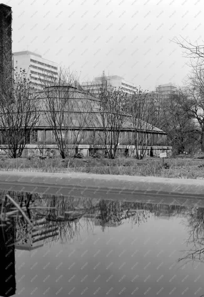 Városkép - A Fűvészkert pálmaháza