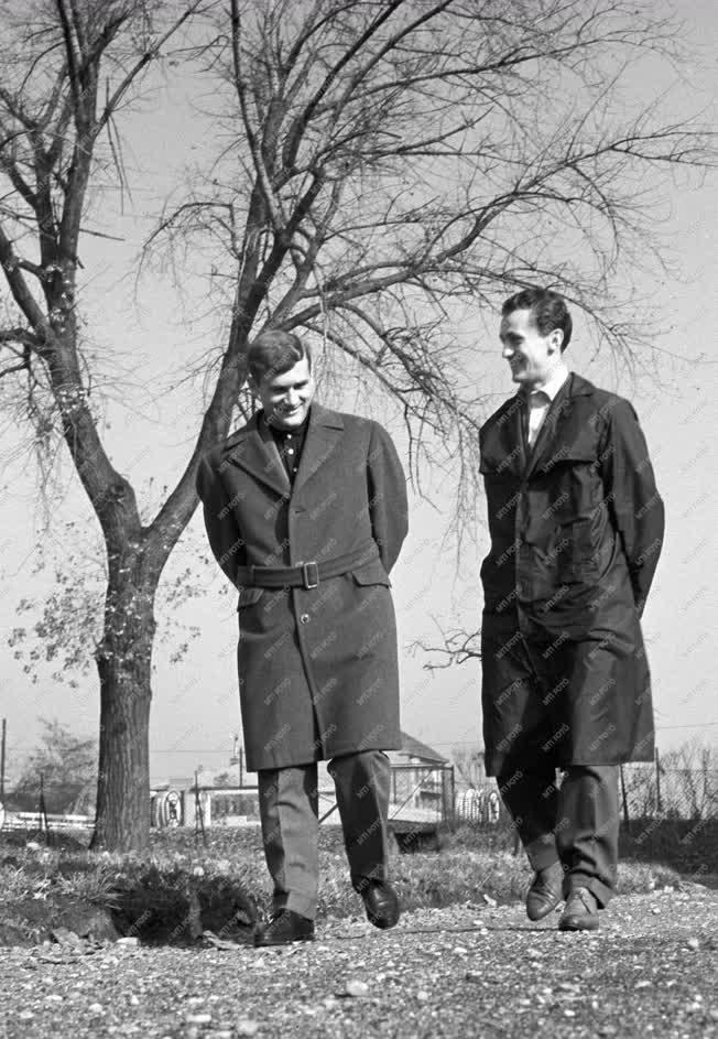 Labdarúgás - Tichy Lajos és Albert Flórián