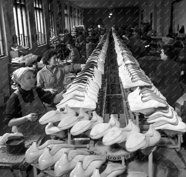 Vállalat - Szegedi Cipőgyár
