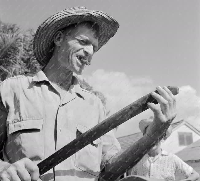 Mezőgazdaság - Kubai földműves
