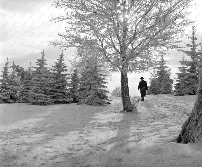 Szabadidő - Téli üdülés Galyatetőn