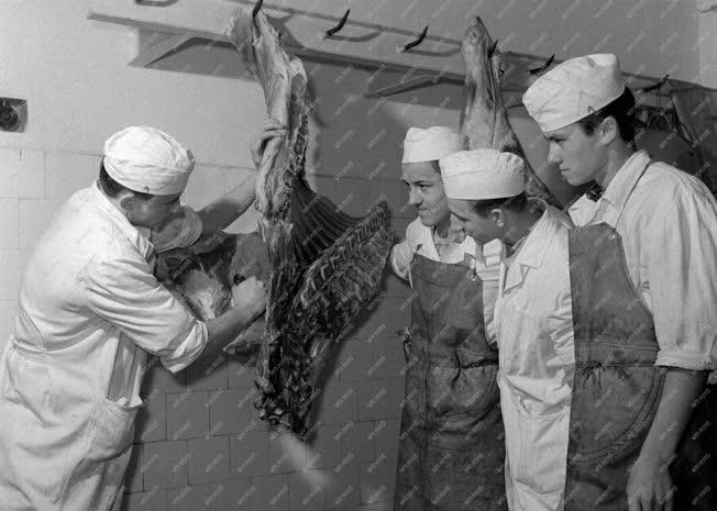 Oktatás - Húsipari szakemberképzés Szegeden
