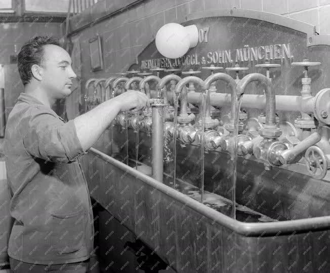 Szeszipar - Nagykanizsai Sörgyár