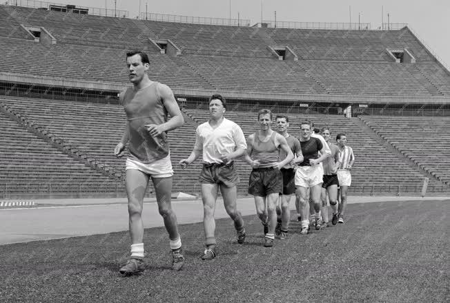 Sport - Labdarúgás - A Wales labdarúgócsapata Budapesten