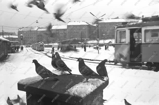 Közlekedés - Tél Budapesten