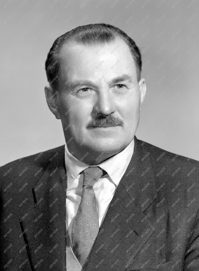 Portré - Szobek András