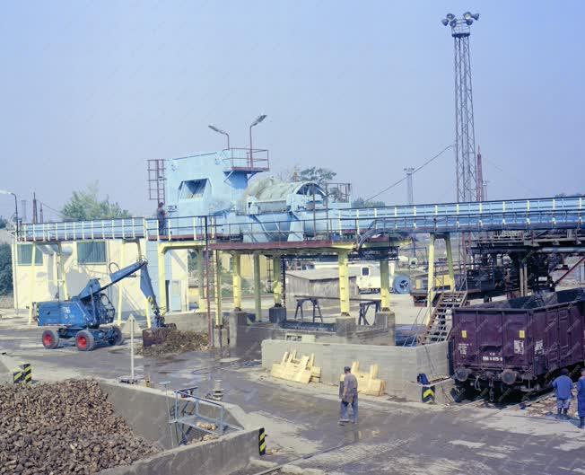 Ipar - A lőrinci cukorgyár