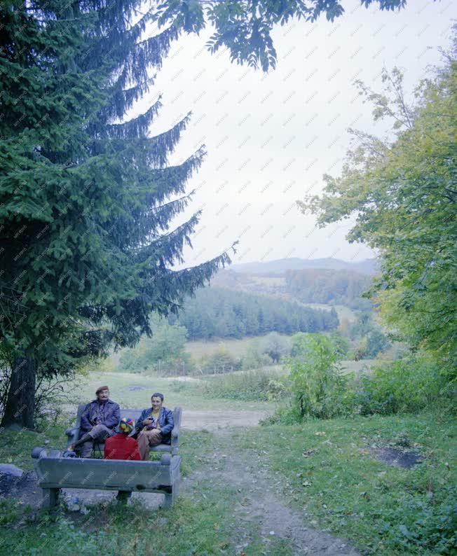 Természet - A Szentléleki-völgyben
