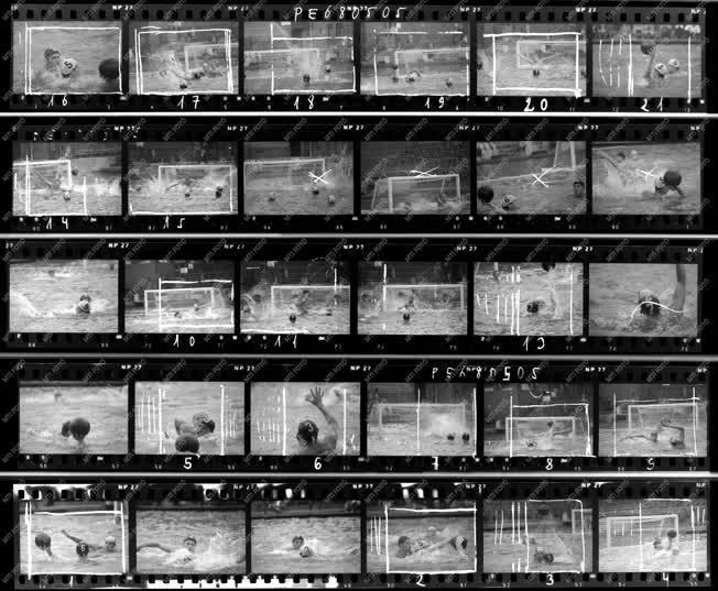 Sport - FTC-Újpesti Dózsa vízilabda mérkőzés