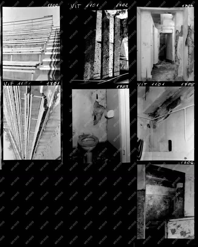 Építkezés - Kultúra - Felújításra vár a Margitszigeti Színpad