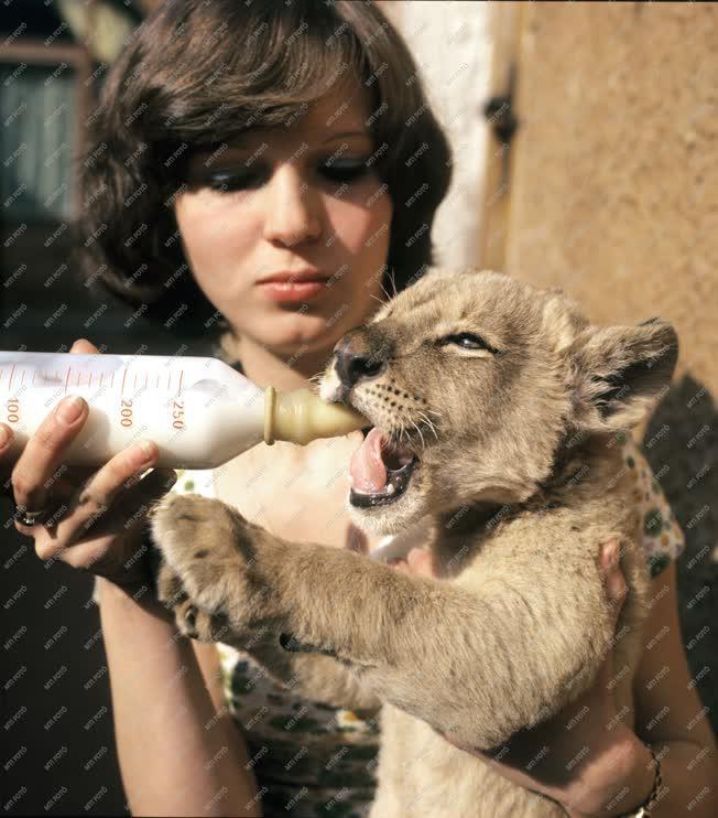 Állatvédelem - Xantus János Állatkert