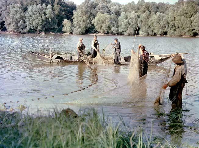 Halászathoz készülnek a bajai halászati tsz tagjai